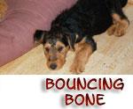 BouncingBone