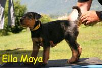 Spiersbach_E_Maya