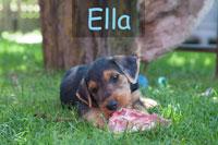 Spiersbach_Ella