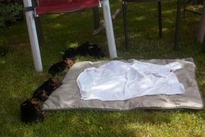 bei 30° im Schatten verzichten wir auf die feingerichtete Decke!