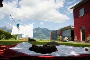 Beste Prägung auf die Schweizer Berge (Daniel Kläy)