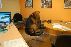 21. Juni 2010 Im Büro