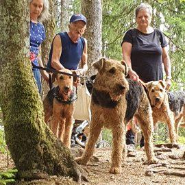 3 Spiersbächler im Schwarzwald